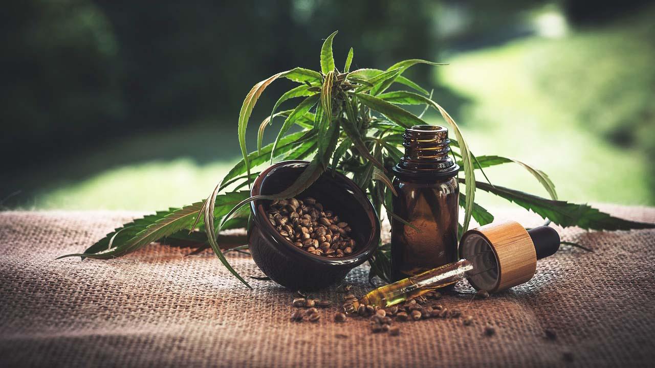 CBD Öl mit Pipette und CBD Samen