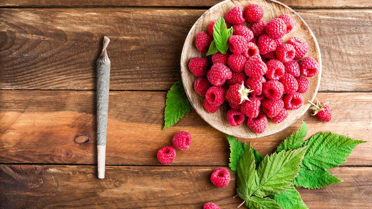 Himbeerblätter und Cannabis Joint