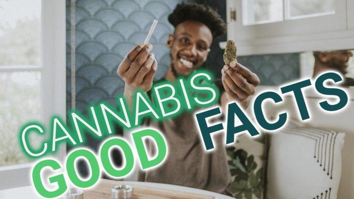 Ein junger dunkelhäutiger Mann hält eine Cannabisblüte und einen Joint